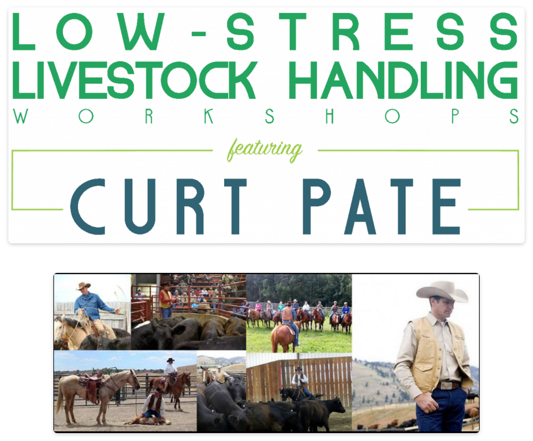 Low-Stress Livestock Handling with Curt Pate @ Crow Creek Ranch